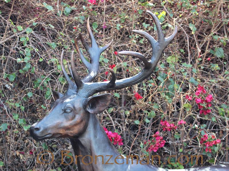 bronze deer
