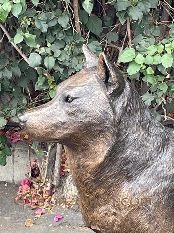 custom bronze husky statue